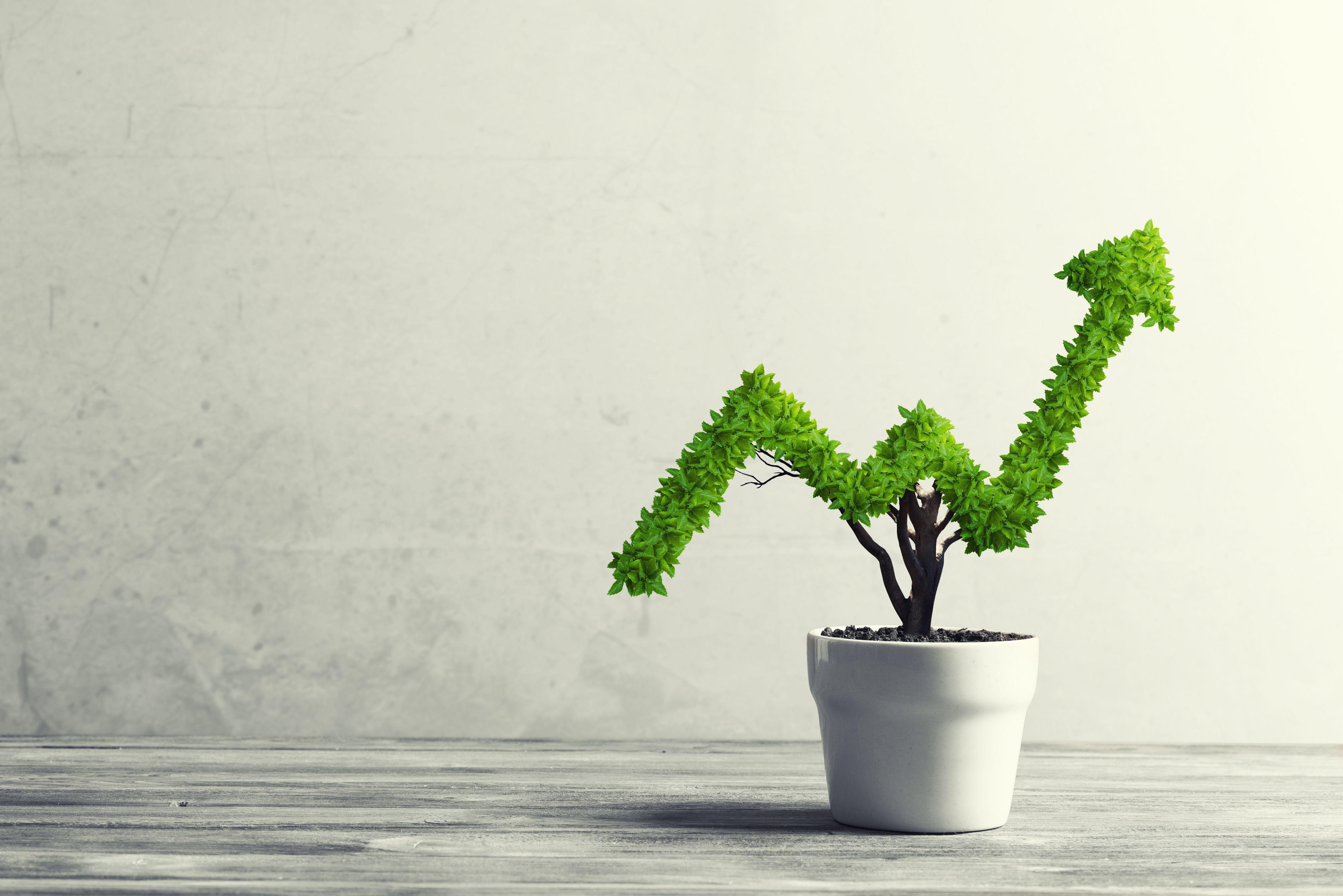 Vlaganje v trajnostne naložbe